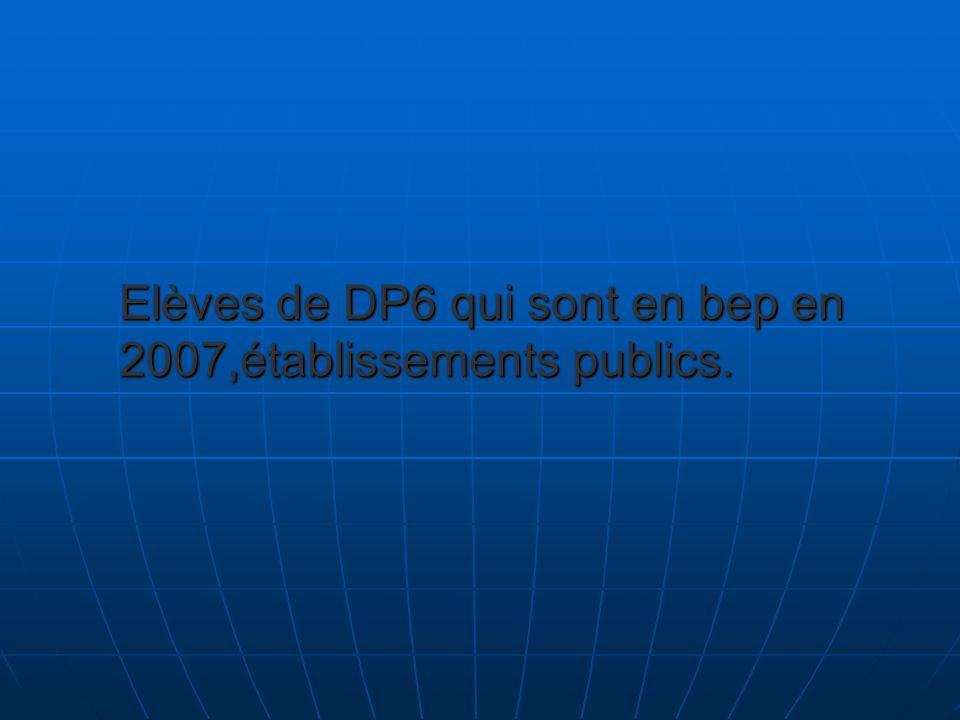 Elèves de DP6 qui sont en bep en 2007,établissements publics.