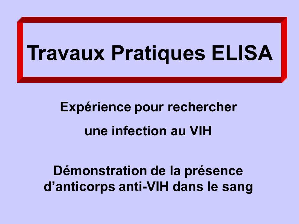 Travaux Pratiques ELISA Expérience pour rechercher une infection au VIH Démonstration de la présence danticorps anti-VIH dans le sang
