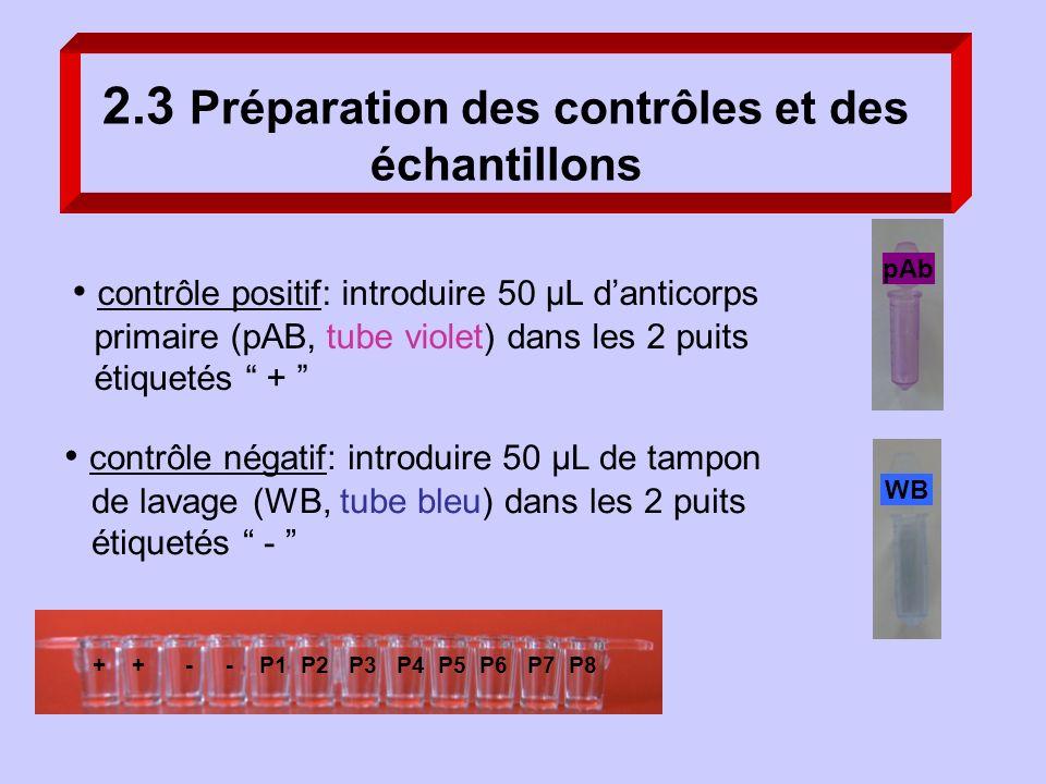 contrôle positif: introduire 50 µL danticorps primaire (pAB, tube violet) dans les 2 puits étiquetés + 2.3 Préparation des contrôles et des échantillo