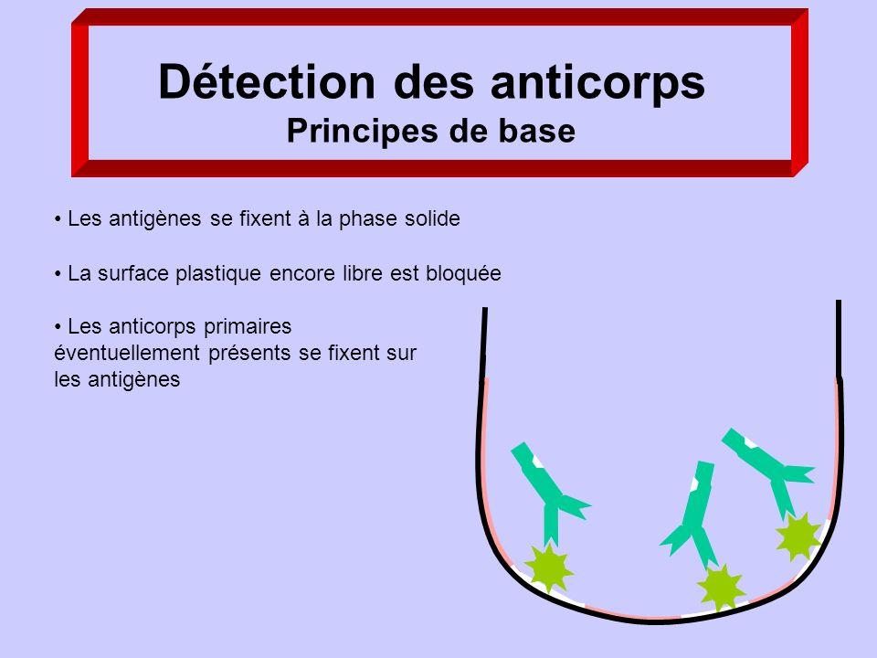 Les anticorps primaires éventuellement présents se fixent sur les antigènes Les antigènes se fixent à la phase solide La surface plastique encore libr