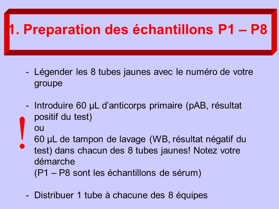 1. Preparation des échantillons P1 – P8 -Légender les 8 tubes jaunes avec le numéro de votre groupe -Introduire 60 µL danticorps primaire (pAB, résult