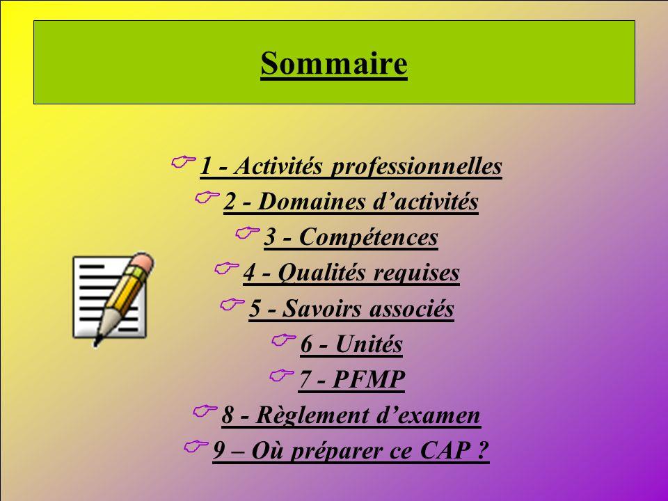 2 Sommaire 1 - Activités professionnelles 2 - Domaines dactivités 3 - Compétences 4 - Qualités requises 5 - Savoirs associés 6 - Unités 7 - PFMP 8 - R