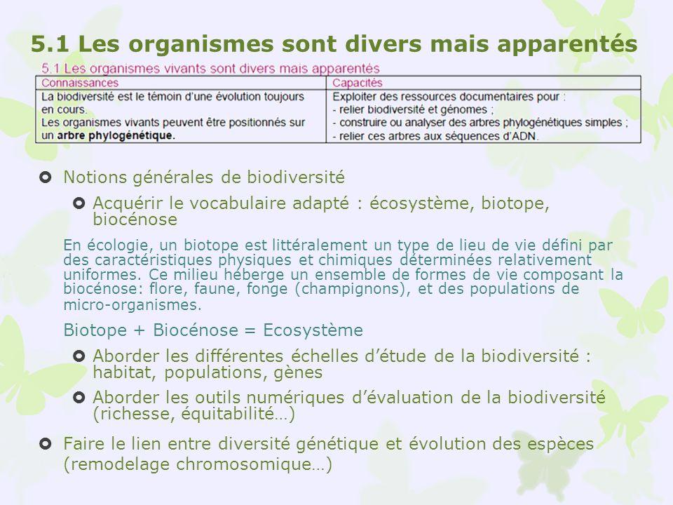 Notions générales de biodiversité Acquérir le vocabulaire adapté : écosystème, biotope, biocénose En écologie, un biotope est littéralement un type de