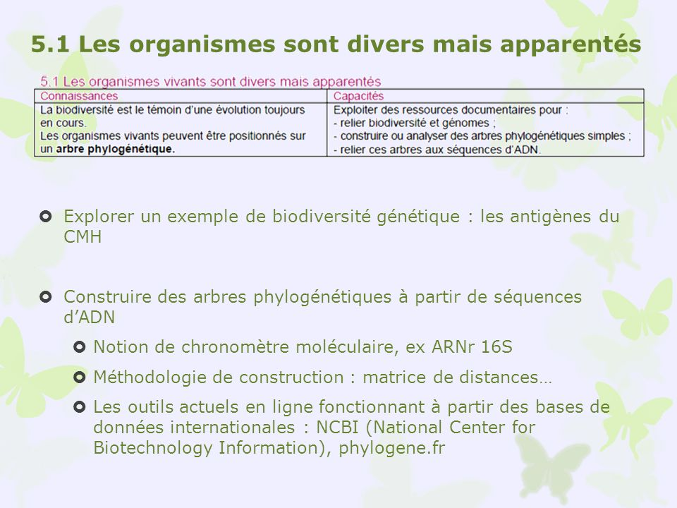 Explorer un exemple de biodiversité génétique : les antigènes du CMH Construire des arbres phylogénétiques à partir de séquences dADN Notion de chrono