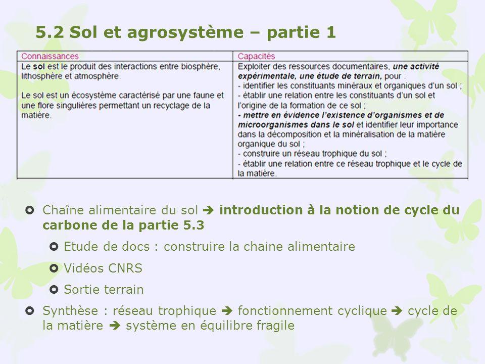 Chaîne alimentaire du sol introduction à la notion de cycle du carbone de la partie 5.3 Etude de docs : construire la chaine alimentaire Vidéos CNRS S