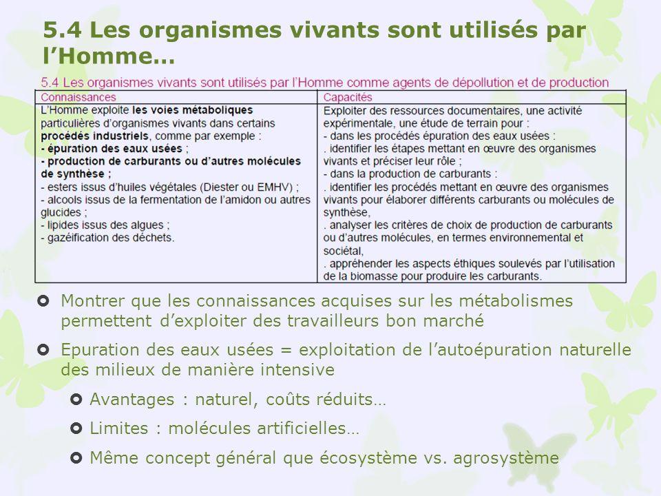 5.4 Les organismes vivants sont utilisés par lHomme… Montrer que les connaissances acquises sur les métabolismes permettent dexploiter des travailleur