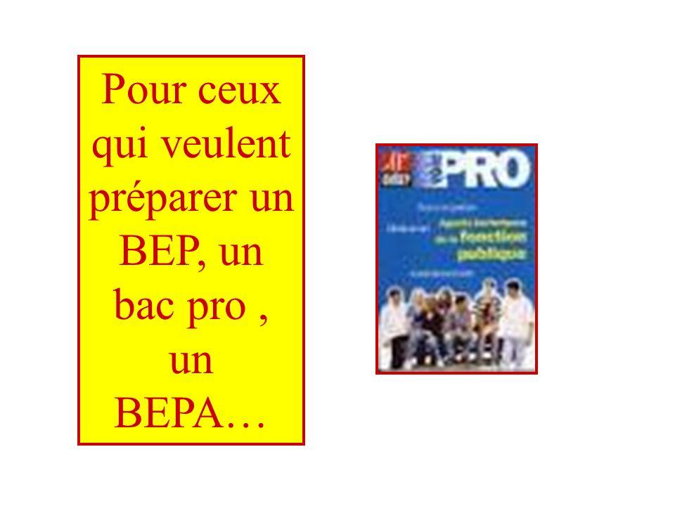 Pour ceux qui veulent préparer un BEP, un bac pro, un BEPA…
