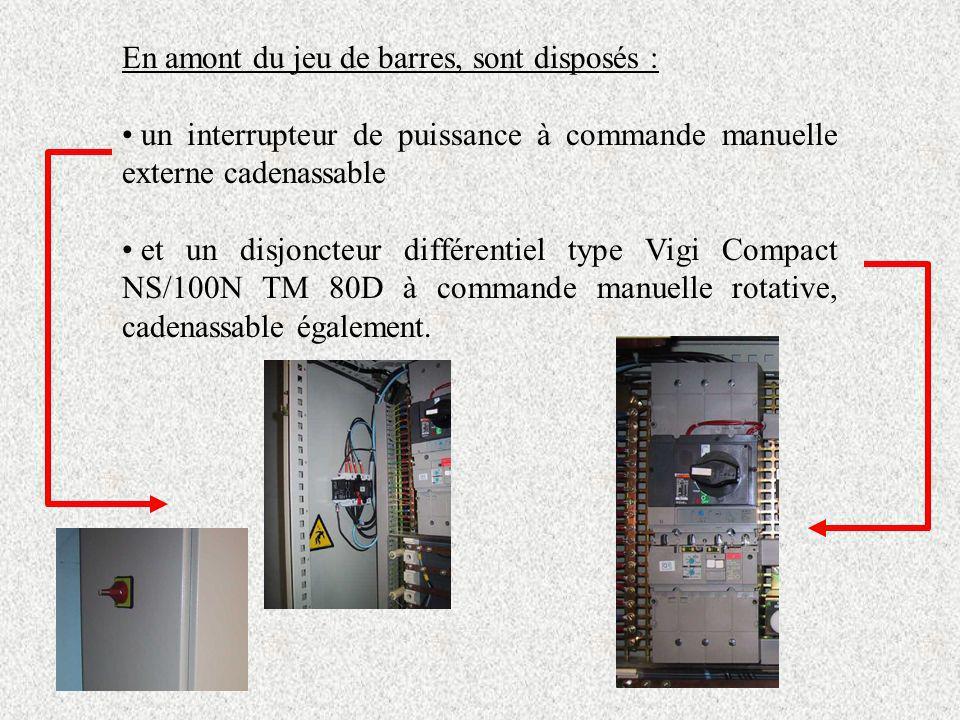 En amont du jeu de barres, sont disposés : un interrupteur de puissance à commande manuelle externe cadenassable et un disjoncteur différentiel type V
