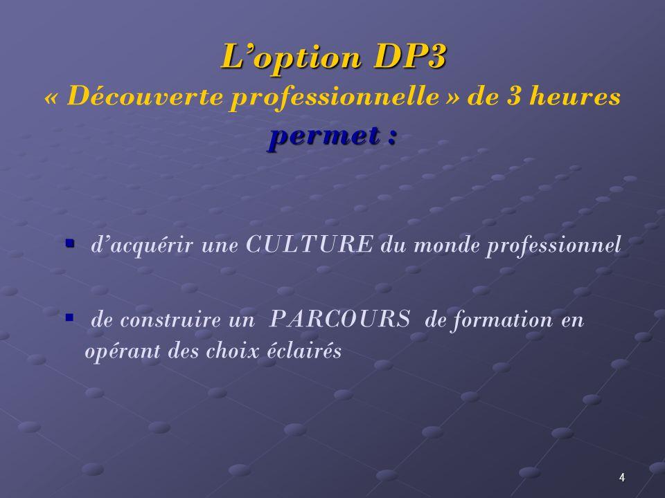 4 dacquérir une CULTURE du monde professionnel de construire un PARCOURS de formation en opérant des choix éclairés Loption DP3 permet : Loption DP3 «