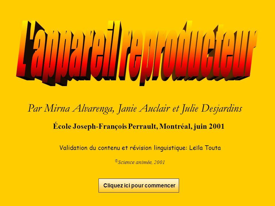 Par Mirna Alvarenga, Janie Auclair et Julie Desjardins École Joseph-François Perrault, Montréal, juin 2001 Validation du contenu et révision linguisti