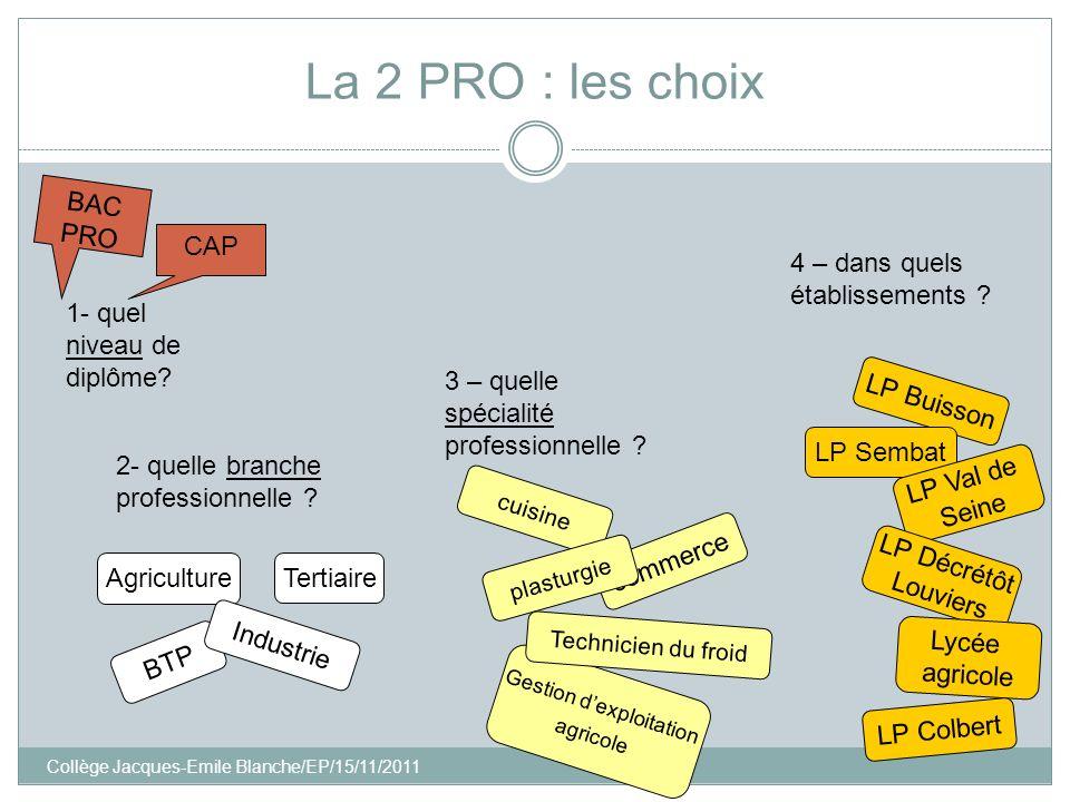 Collège Jacques-Emile Blanche/EP/15/11/2011 Gestion dexploitation agricole commerce La 2 PRO : les choix 1- quel niveau de diplôme? BAC PRO CAP 2- que