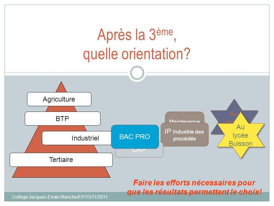 Collège Jacques-Emile Blanche/EP/15/11/2011 Maintenance MEI IP Industrie des procédés CAP Après la 3 ème, quelle orientation? Tertiaire Industriel BTP
