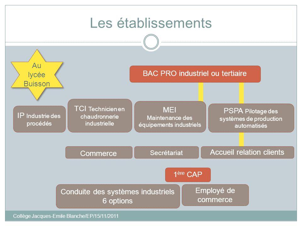 Collège Jacques-Emile Blanche/EP/15/11/2011 Les établissements IP Industrie des procédés BAC PRO industriel ou tertiaire TCI Technicien en chaudronner