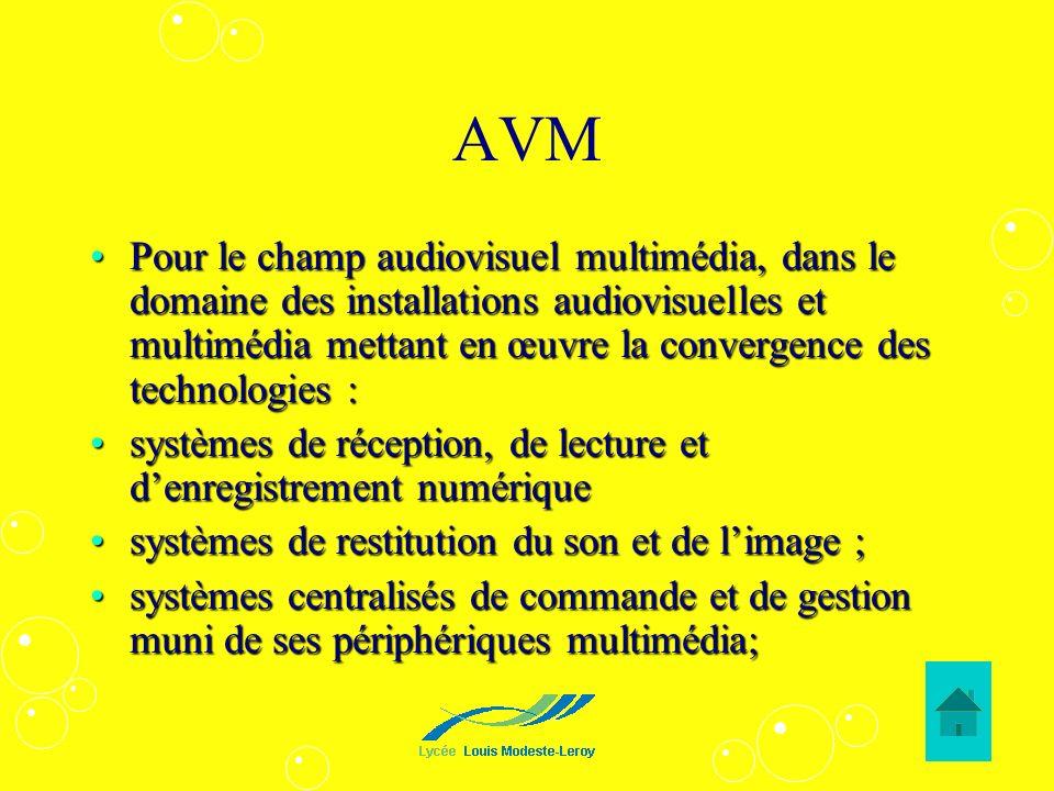 AVM Pour le champ audiovisuel multimédia, dans le domaine des installations audiovisuelles et multimédia mettant en œuvre la convergence des technolog