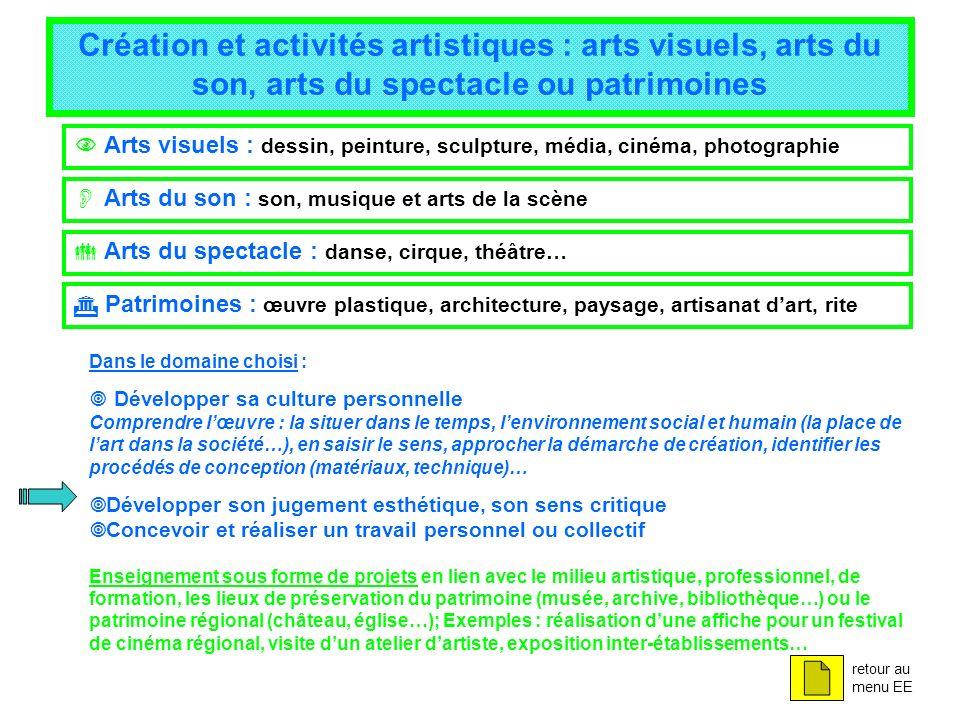 Création et activités artistiques : arts visuels, arts du son, arts du spectacle ou patrimoines Arts visuels : dessin, peinture, sculpture, média, cin