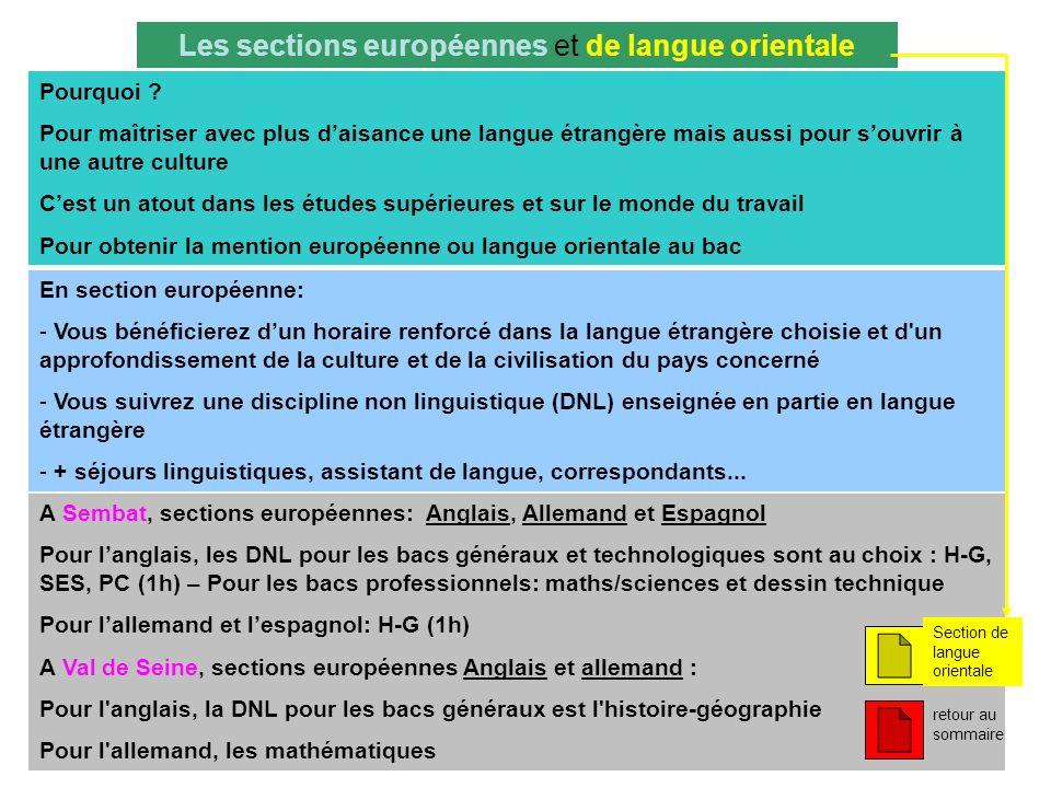 Les sections européennes et de langue orientale Pourquoi ? Pour maîtriser avec plus daisance une langue étrangère mais aussi pour souvrir à une autre