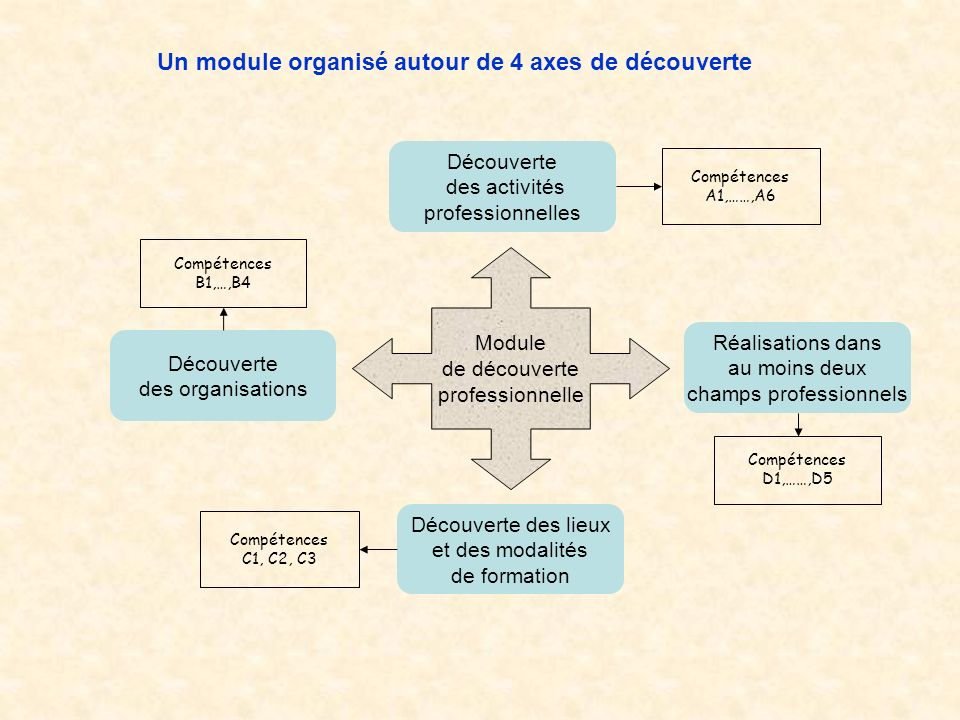 Module de découverte professionnelle Un module organisé autour de 4 axes de découverte Découverte des activités professionnelles Compétences A1,……,A6 Découverte des organisations Compétences B1,…,B4 Découverte des lieux et des modalités de formation Compétences C1, C2, C3 Réalisations dans au moins deux champs professionnels Compétences D1,……,D5