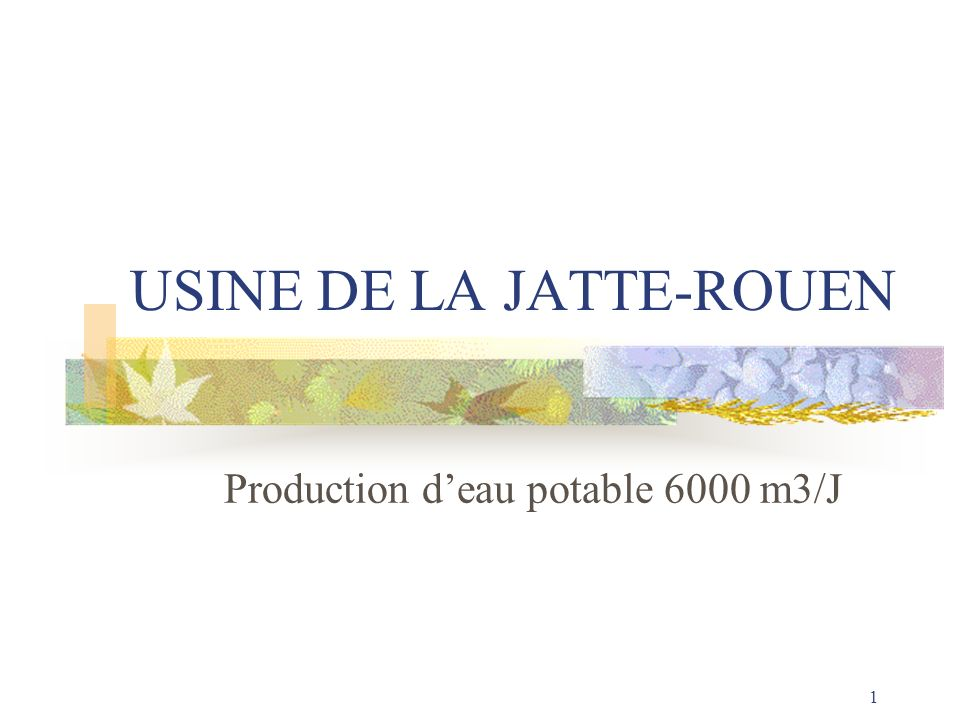 1 USINE DE LA JATTE-ROUEN Production deau potable 6000 m3/J