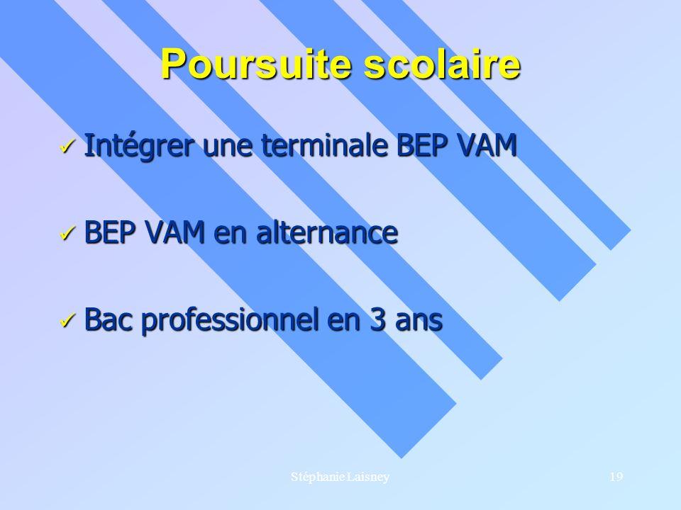 Stéphanie Laisney19 Poursuite scolaire Intégrer une terminale BEP VAM Intégrer une terminale BEP VAM BEP VAM en alternance BEP VAM en alternance Bac p