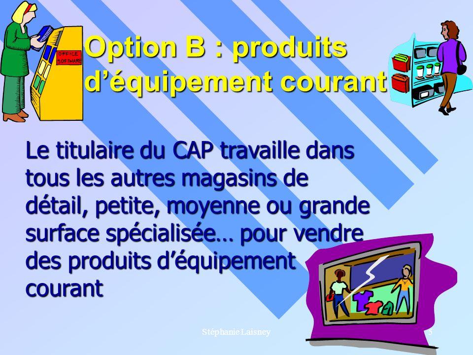 Stéphanie Laisney5 Option B : produits déquipement courant Le titulaire du CAP travaille dans tous les autres magasins de détail, petite, moyenne ou g
