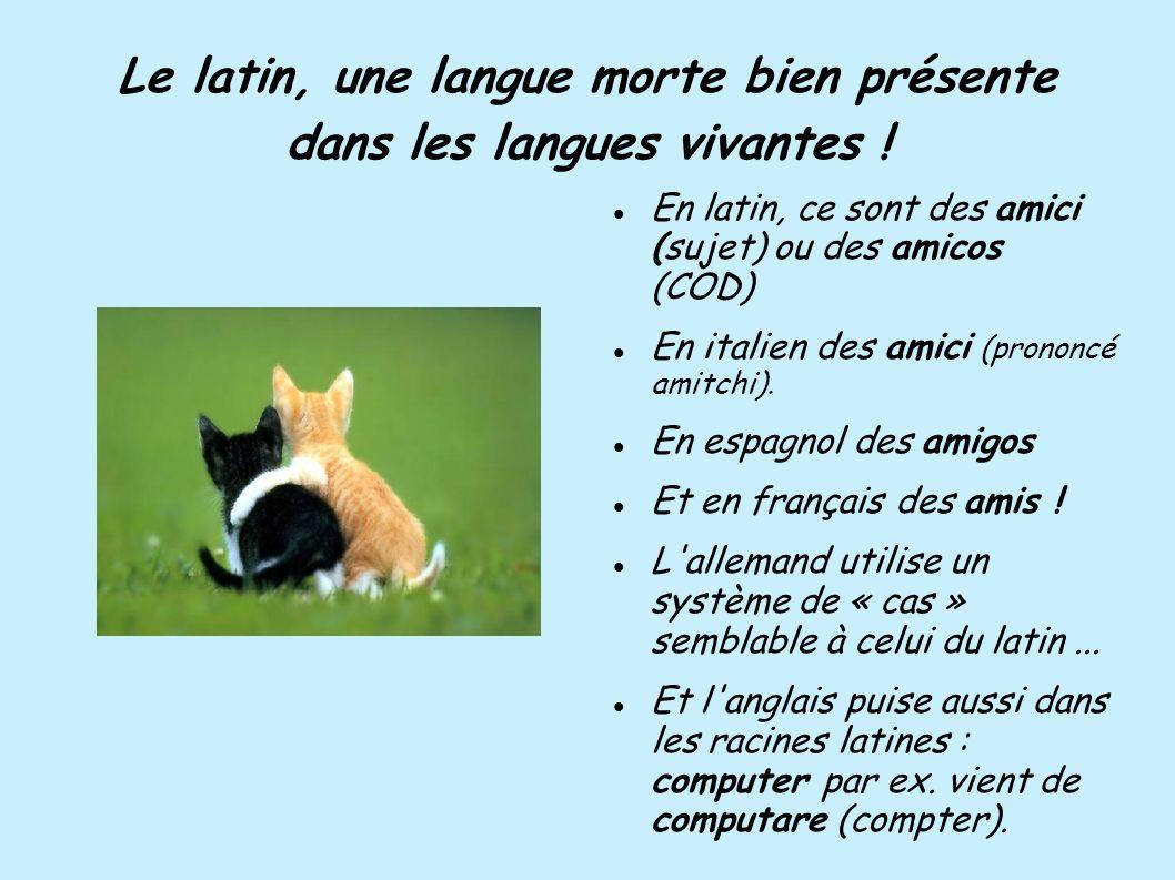 Le latin, une langue morte bien présente dans les langues vivantes ! En latin, ce sont des amici (sujet) ou des amicos (COD) En italien des amici (pro