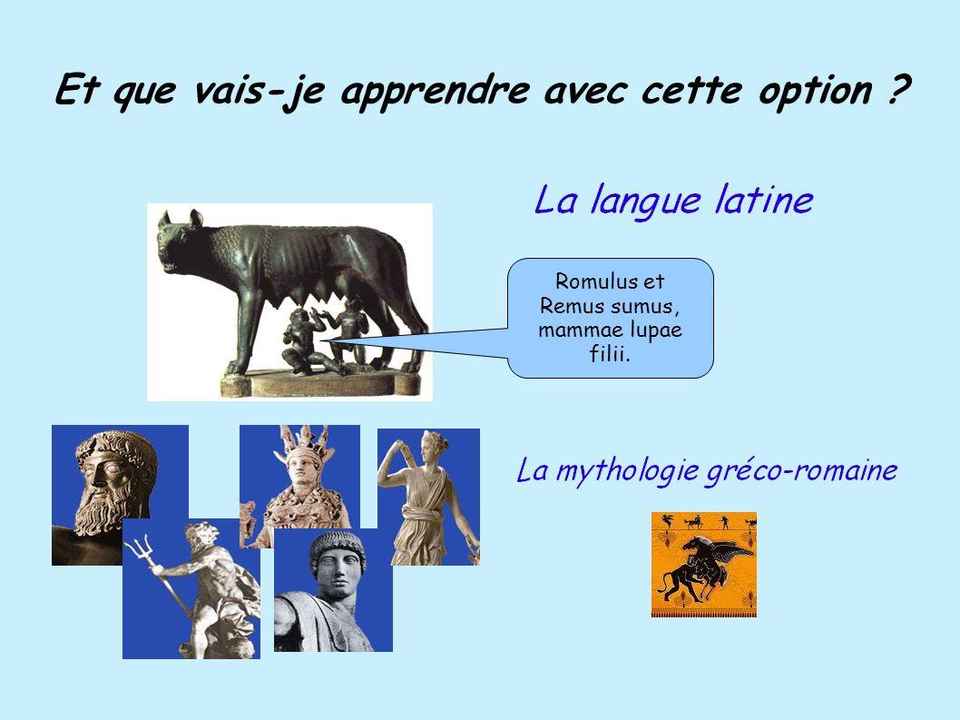 Et que vais-je apprendre avec cette option ? Romulus et Remus sumus, mammae lupae filii.