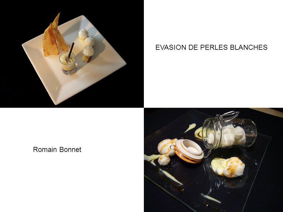 EVASION DE PERLES BLANCHES Romain Bonnet