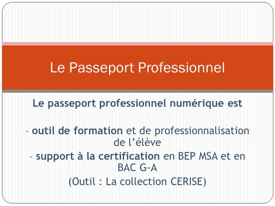 Le passeport professionnel numérique est - outil de formation et de professionnalisation de lélève - support à la certification en BEP MSA et en BAC G-A (Outil : La collection CERISE) Le Passeport Professionnel