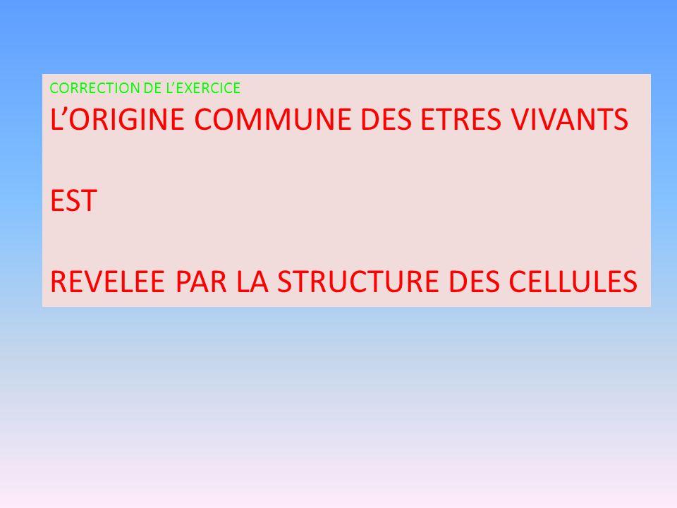 CORRECTION DE LEXERCICE LORIGINE COMMUNE DES ETRES VIVANTS EST REVELEE PAR LA STRUCTURE DES CELLULES