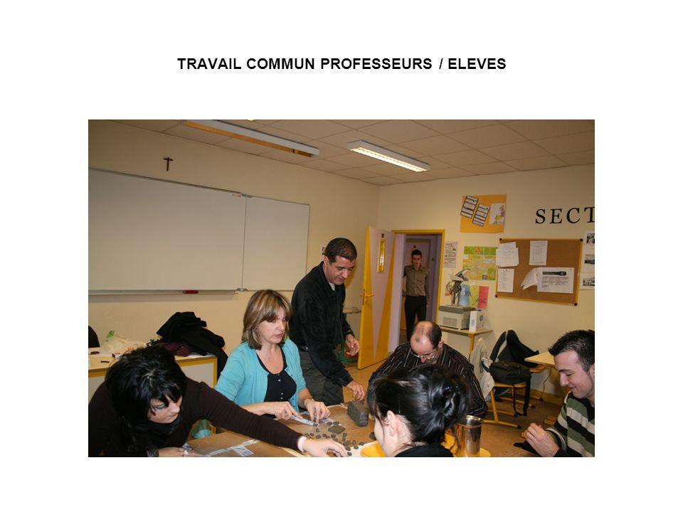 TRAVAIL COMMUN PROFESSEURS / ELEVES