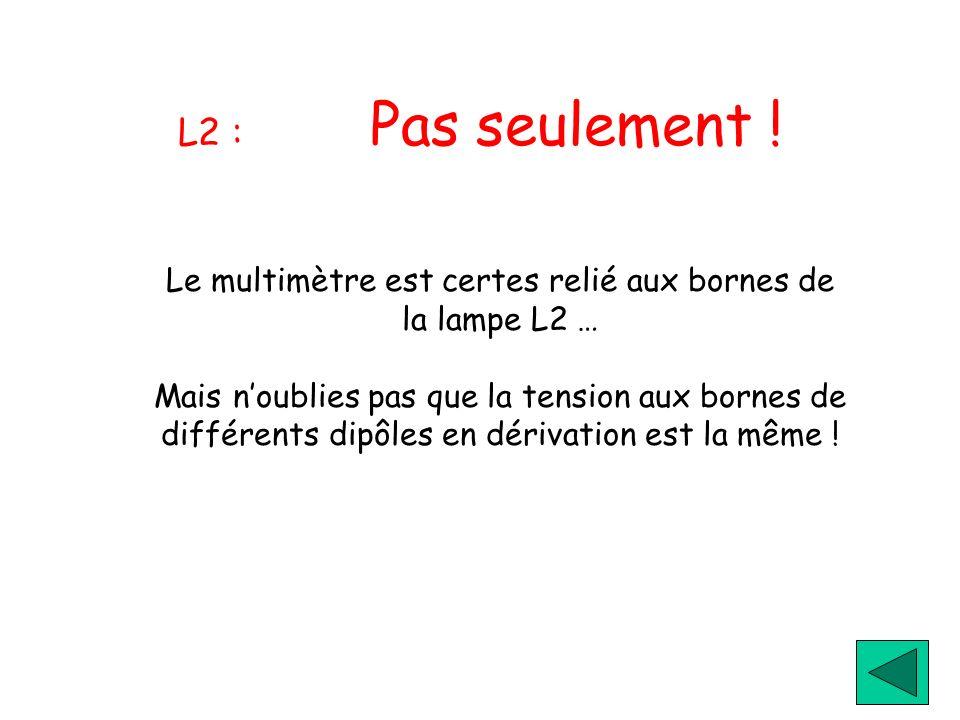 L2 : Pas seulement ! Le multimètre est certes relié aux bornes de la lampe L2 … Mais noublies pas que la tension aux bornes de différents dipôles en d