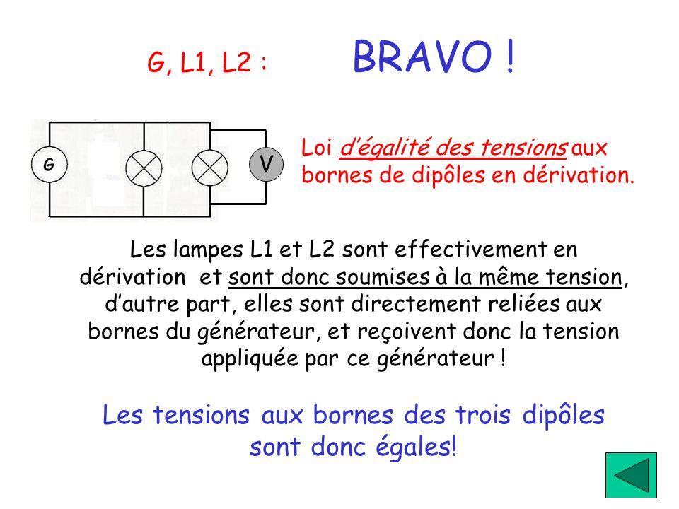 G, L1, L2 : BRAVO ! Les lampes L1 et L2 sont effectivement en dérivation et sont donc soumises à la même tension, dautre part, elles sont directement