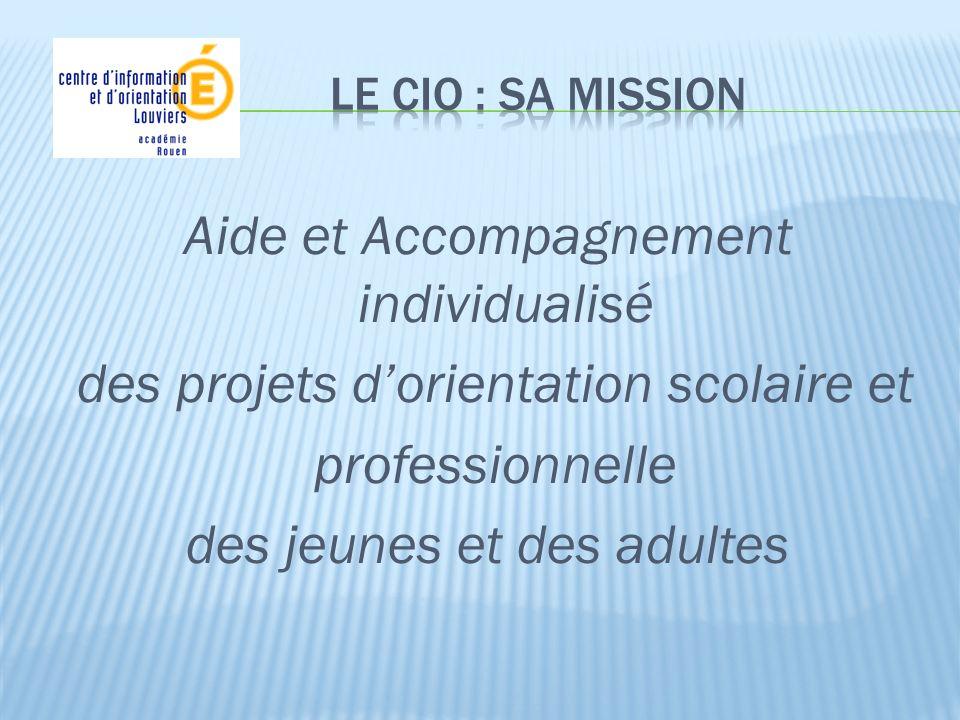 Aide et Accompagnement individualisé des projets dorientation scolaire et professionnelle des jeunes et des adultes