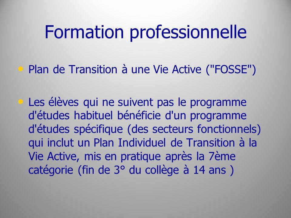 Formation professionnelle Plan de Transition à une Vie Active (