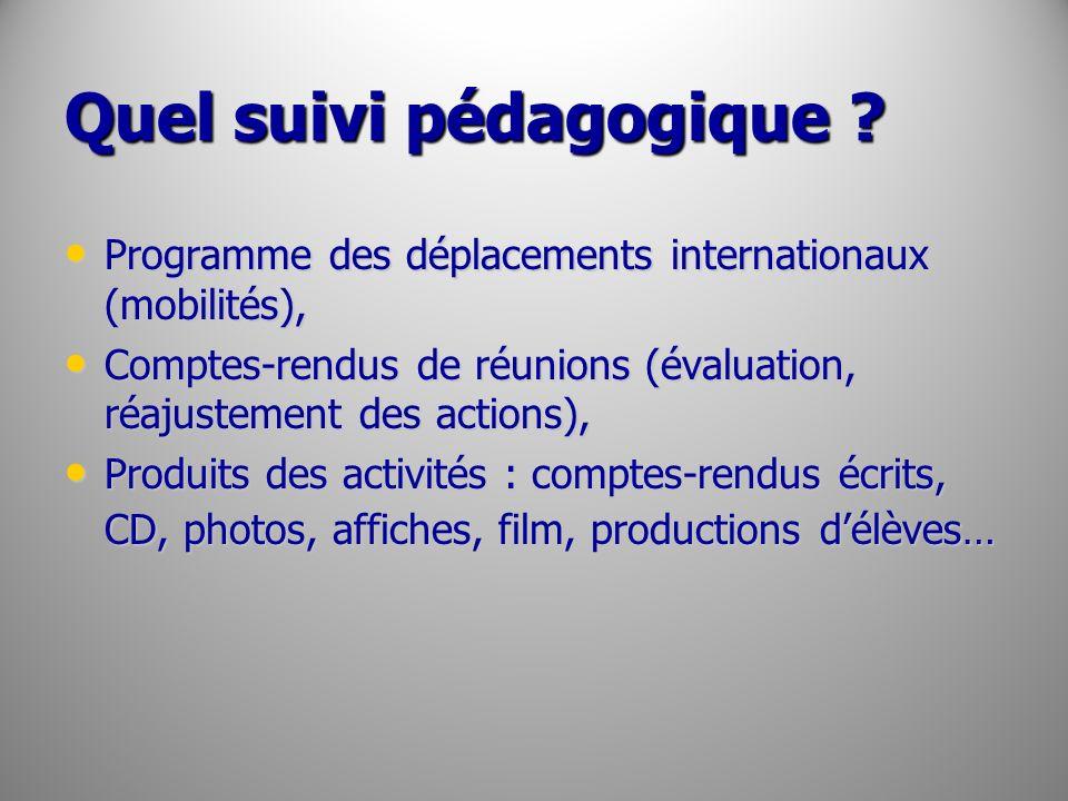 Quel suivi pédagogique ? Programme des déplacements internationaux (mobilités), Programme des déplacements internationaux (mobilités), Comptes-rendus