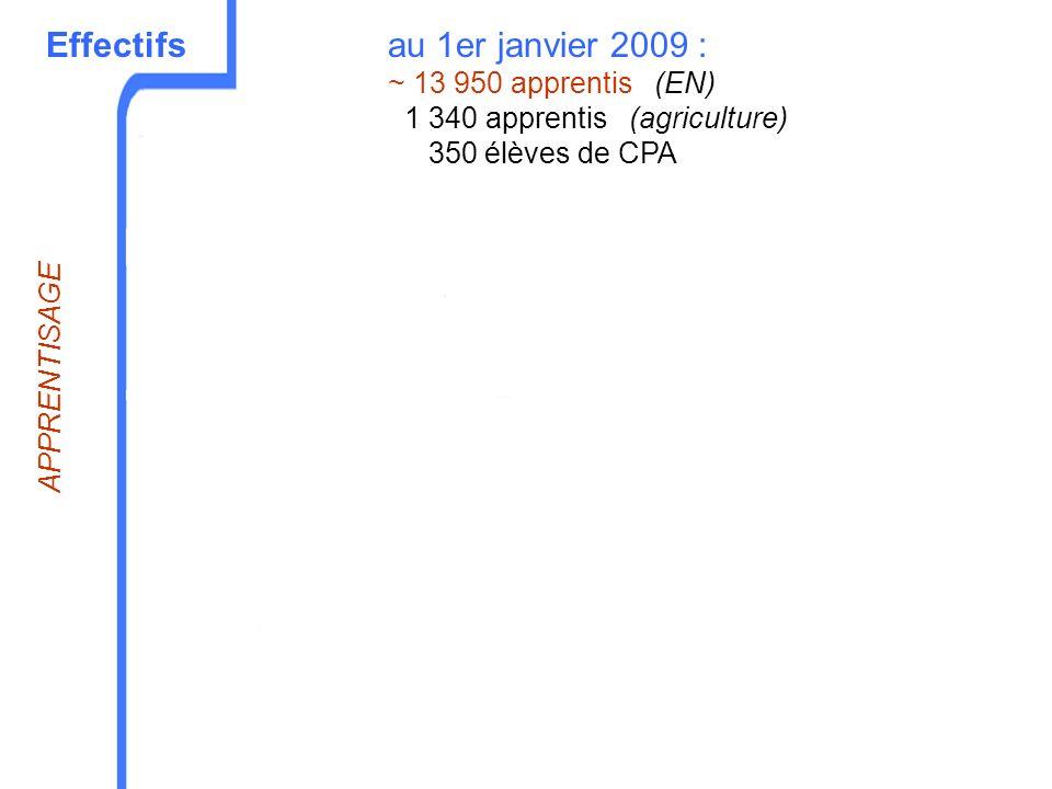 Effectifsau 1er janvier 2009 : ~ 13 950 apprentis (EN) 1 340 apprentis (agriculture) 350 élèves de CPA APPRENTISAGE