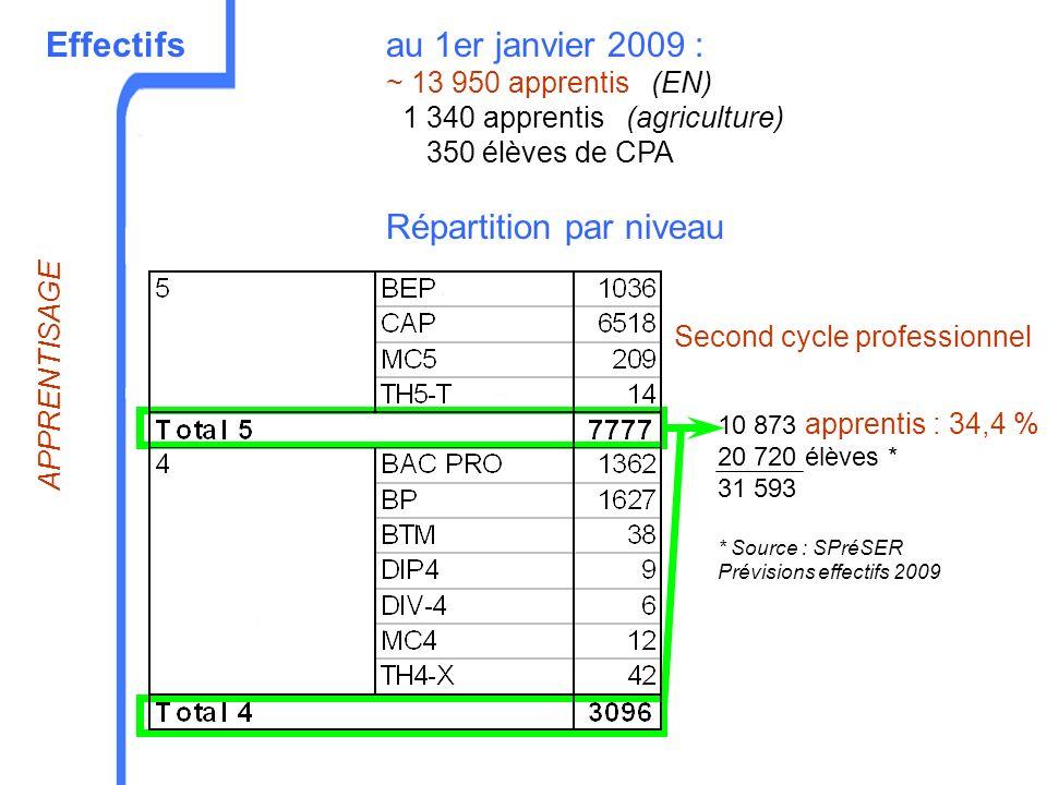 Effectifsau 1er janvier 2009 : ~ 13 950 apprentis (EN) 1 340 apprentis (agriculture) 350 élèves de CPA Répartition par niveau 10 873 apprentis : 34,4
