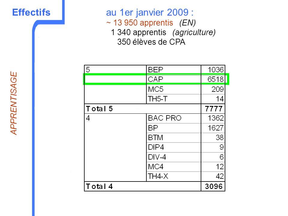 Effectifs APPRENTISAGE au 1er janvier 2009 : ~ 13 950 apprentis (EN) 1 340 apprentis (agriculture) 350 élèves de CPA