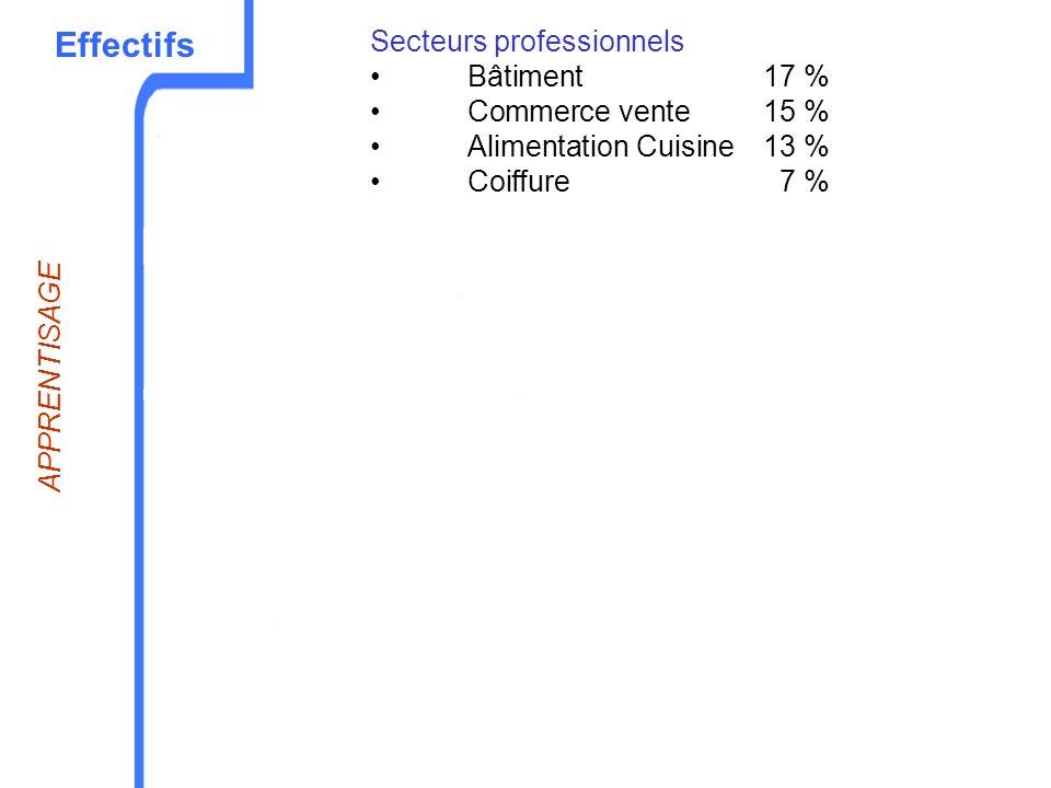 Effectifs Secteurs professionnels Bâtiment17 % Commerce vente15 % Alimentation Cuisine13 % Coiffure7 % APPRENTISAGE