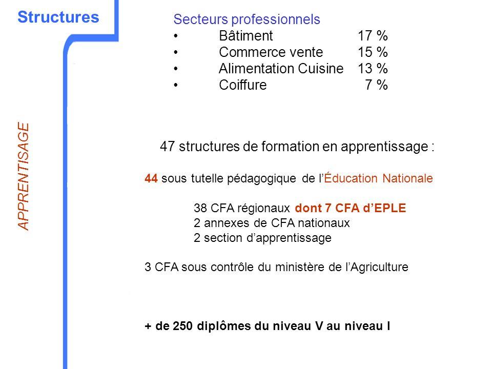 Structures 47 structures de formation en apprentissage : 44 sous tutelle pédagogique de lÉducation Nationale 38 CFA régionaux dont 7 CFA dEPLE 2 annex