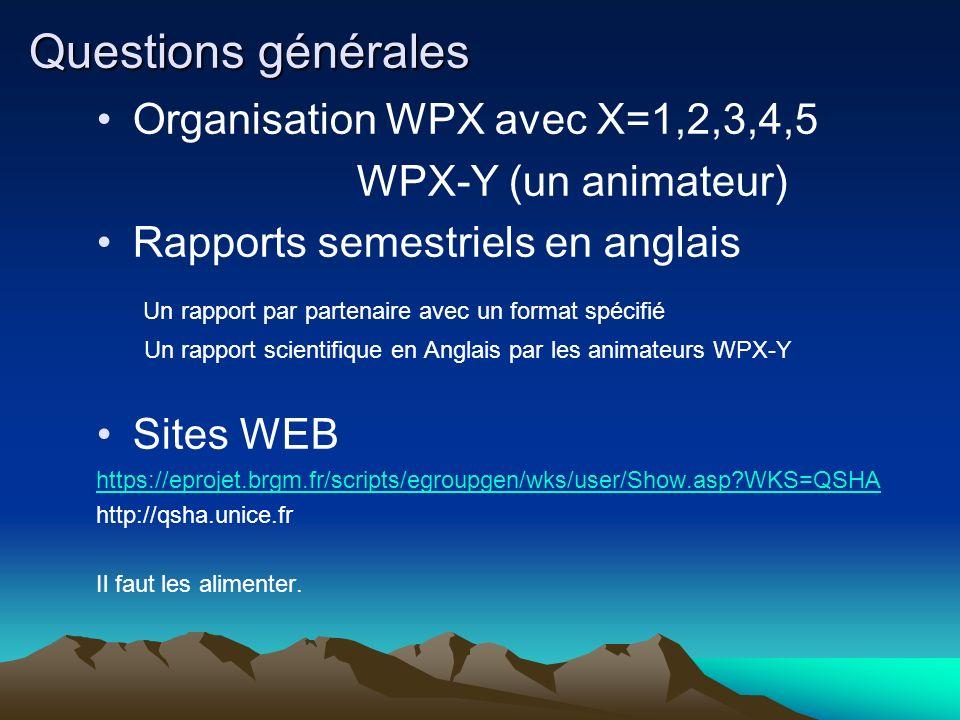 Questions générales Organisation WPX avec X=1,2,3,4,5 WPX-Y (un animateur) Rapports semestriels en anglais Un rapport par partenaire avec un format sp