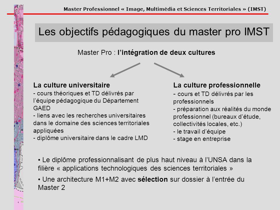 Master Professionnel « Image, Multimédia et Sciences Territoriales » (IMST) Les objectifs pédagogiques du master pro IMST Le diplôme professionnalisan