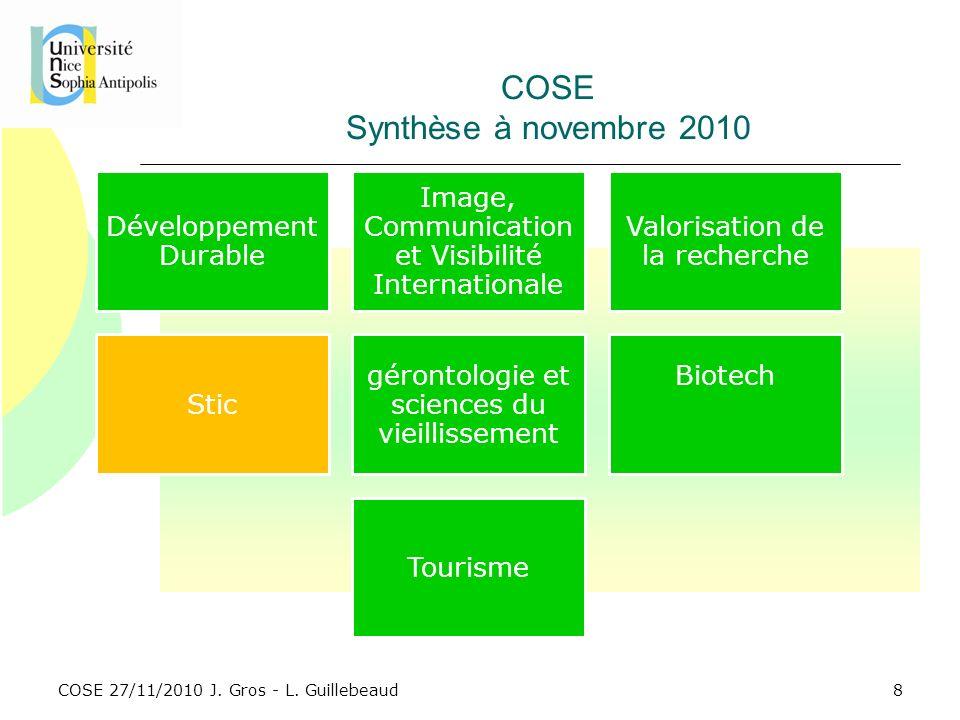 COSE 27/11/2010 J. Gros - L. Guillebeaud COSE Synthèse à novembre 2010 8 Développement Durable Image, Communication et Visibilité Internationale Valor