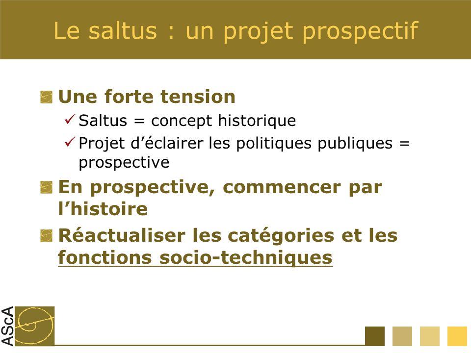 Le saltus : un projet prospectif Une forte tension Saltus = concept historique Projet déclairer les politiques publiques = prospective En prospective, commencer par lhistoire Réactualiser les catégories et les fonctions socio-techniques