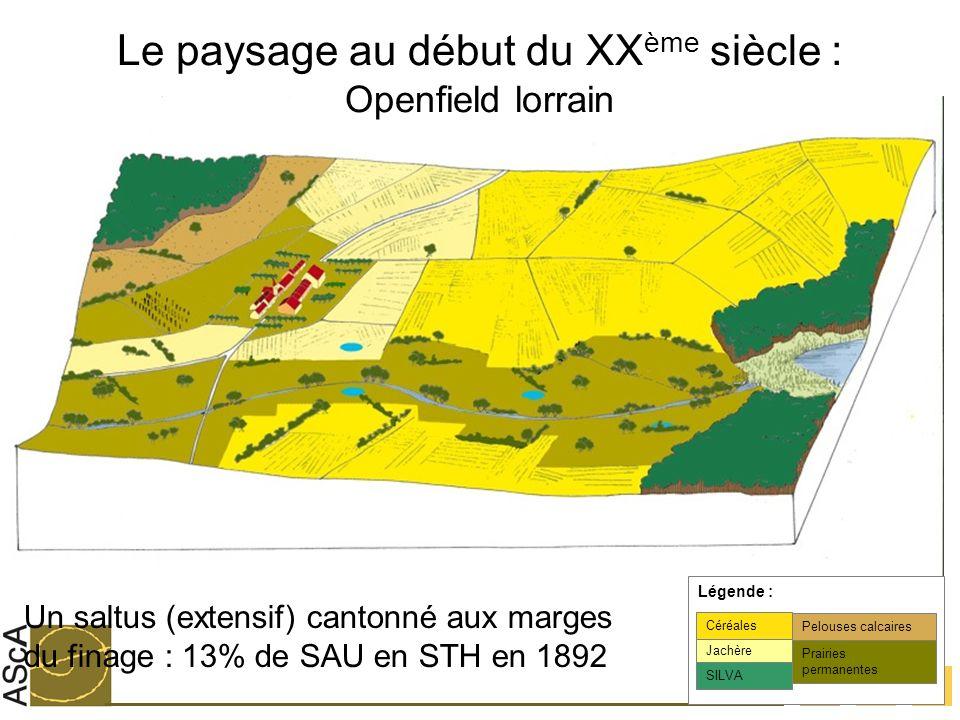 13 Le paysage au début du XX ème siècle : Openfield lorrain Jachère Céréales SILVA Légende : Prairies permanentes Pelouses calcaires Un saltus (extens