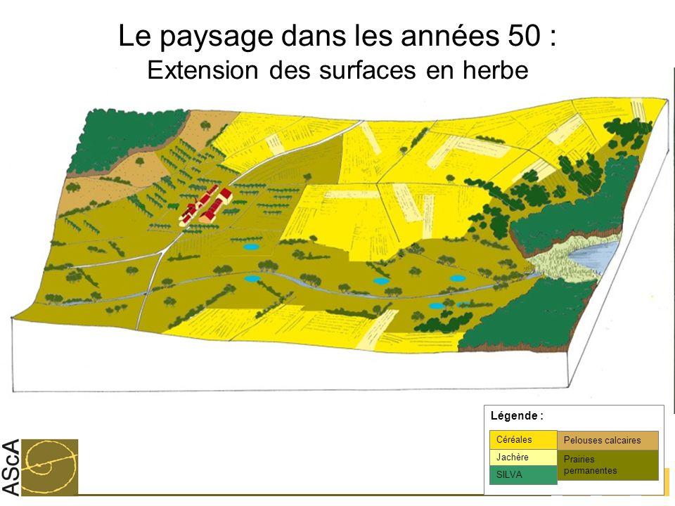 15 Le paysage dans les années 50 : Extension des surfaces en herbe Jachère Céréales SILVA Légende : Prairies permanentes Pelouses calcaires