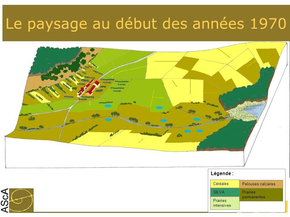 17 Le paysage au début des années 1970 Prairies intensives Céréales SILVA Légende : Prairies permanentes Pelouses calcaires