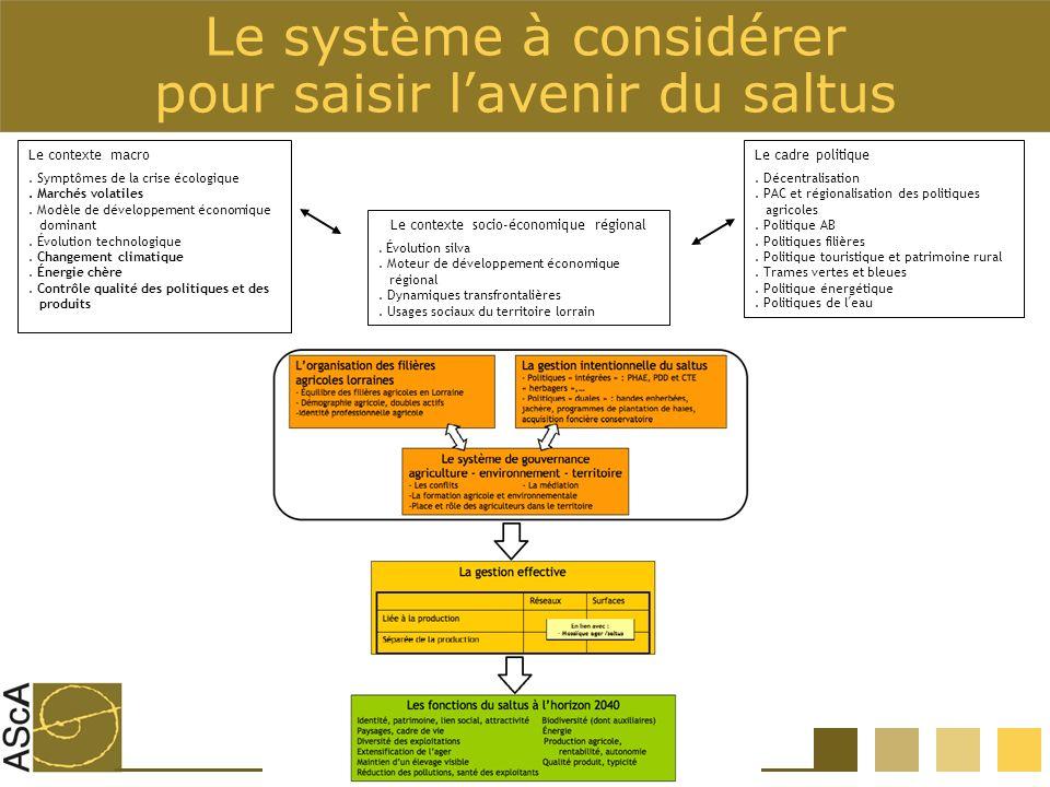 Le système à considérer pour saisir lavenir du saltus Le contexte socio-économique régional.