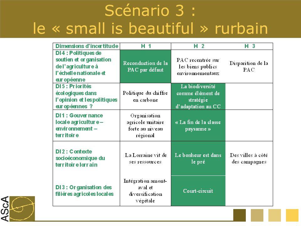 Scénario 3 : le « small is beautiful » rurbain
