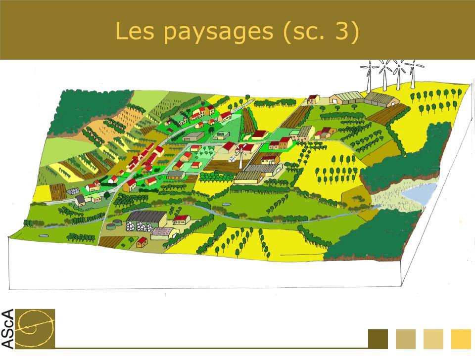 Les paysages (sc. 3)
